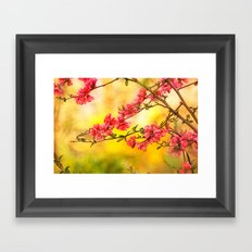 Spring is beautiful Framed Art Print