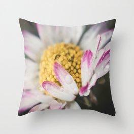 Raindrops on a daisy Throw Pillow