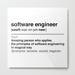 Software Engineer definition Metal Print