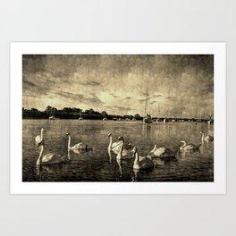 Serene Swans Vintage Art Print