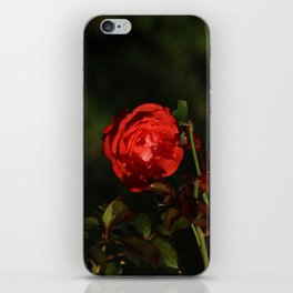 Deep red subject iPhone Skin