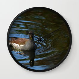 Common Moorhen Wall Clock