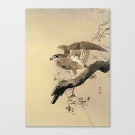 Hawk on the tree branch - Japanese vintage woodblock print Canvas Print