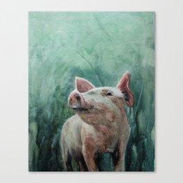 One Bad Pig Canvas Print