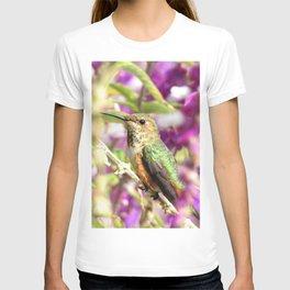 Lady Allen's T-shirt