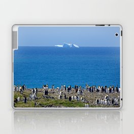 King Penguins in front of an iceberg Laptop & iPad Skin