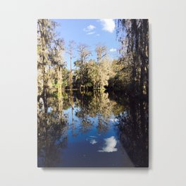 Mirror Swamp Charleston Plantation Metal Print