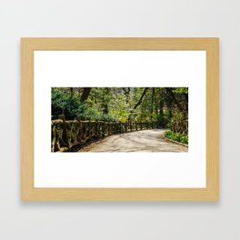 A Stroll through Central Park Framed Art Print