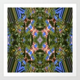 Loving Mimosa..... Art Print