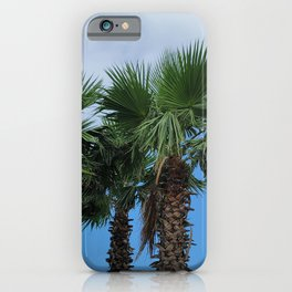 A tree that resembles a pineapple in jeju island of south korea. iPhone Case