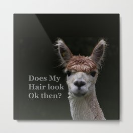 Funny hairstyle alpaca hairdressing Metal Print