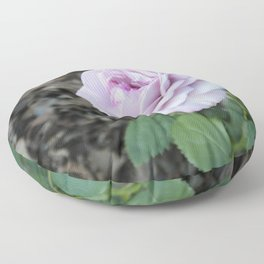 The Palest Pink Rose Standing out in the Gloom Floor Pillow