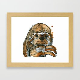 Three Toed Tea Sloth Framed Art Print