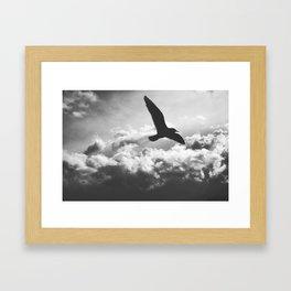 In Flight Framed Art Print