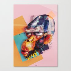old monkey Canvas Print