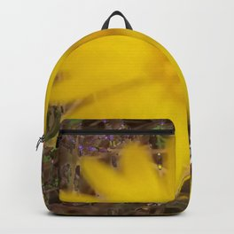 Conclusion and Moving On Backpack