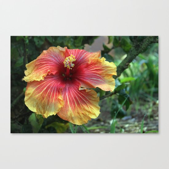 Joy in the Garden Canvas Print