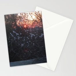 white flowers are going to sleep Stationery Cards