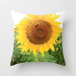 Sonnenblumen 2 Throw Pillow