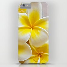 Plumeria Blossoms iPhone 6 Plus Slim Case