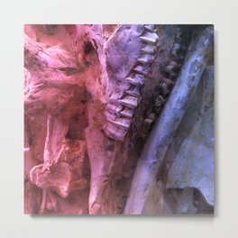 Fossil with Jawbone Metal Print