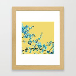 Sweet Blossom Framed Art Print