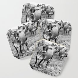 Dairy Cow Stowe Vermont Black and White Square Coaster