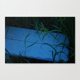 So Blue Bench Canvas Print