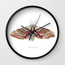 Big Poplar Sphix Wall Clock