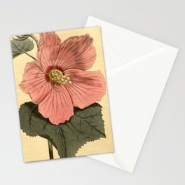 Vintage Illustration of a Hibiscus Flower (1806) Stationery Cards