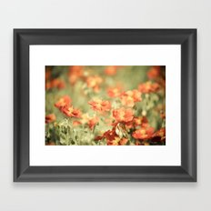 Field of Orange Framed Art Print