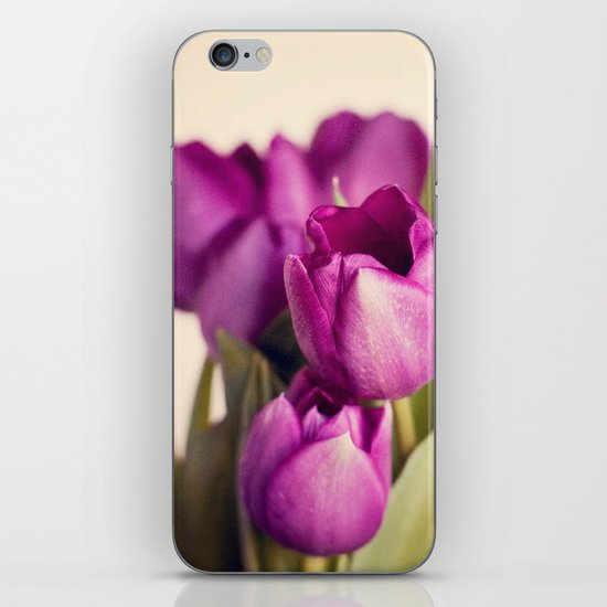 Dark Purple Tulips iPhone & iPod Skin