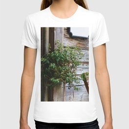 The Rustic Plant T-shirt