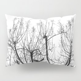 Branched Out 2 Pillow Sham