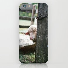 Adorable Sheep Peeking Out From Behind Fence Slim Case iPhone 6s