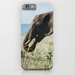 Masai Mara National Reserve XI iPhone Case