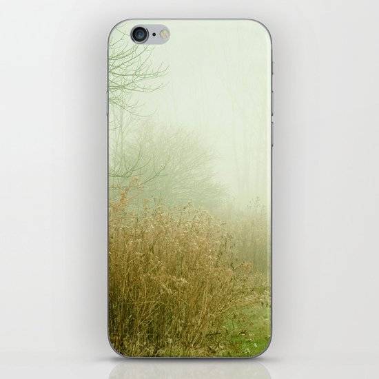 A Lovely Faded Memory of You iPhone & iPod Skin