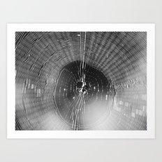 spider web 2016 II Art Print