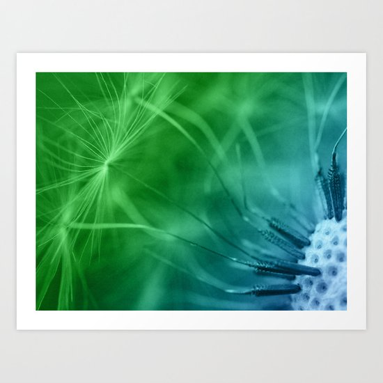 Dandelion Seeds Art Print