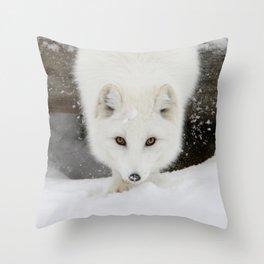 Fixated Throw Pillow
