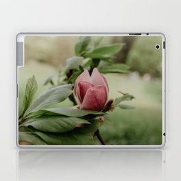 Magnolia Flower 2 Laptop & iPad Skin