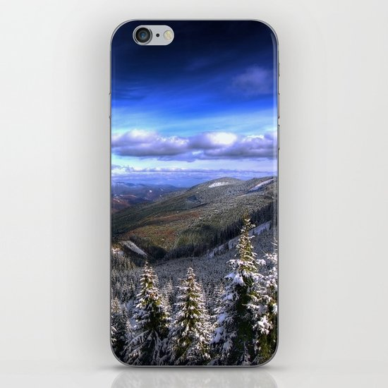 Winter Vision iPhone & iPod Skin
