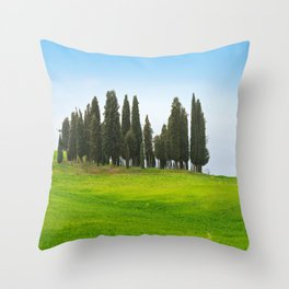 Beautiful spring minimalistic landscape with Italian Cypress on the green hills in Tuscany countrysi Throw Pillow