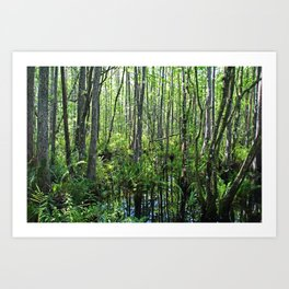 When the Cypress Whispers Art Print