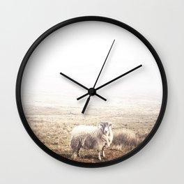Sheep, Ireland. Wall Clock