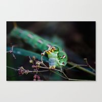 thanksgiving Canvas Prints featuring Thanksgiving by Hourglass