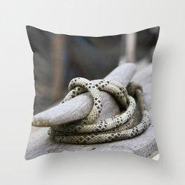 Stowed Away Throw Pillow