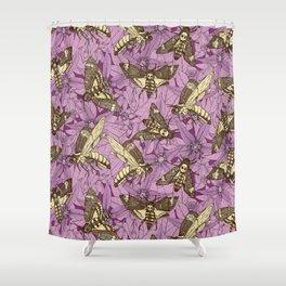 Death's-head hawkmoth purple Shower Curtain