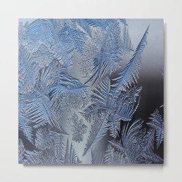 Frost leafe Metal Print