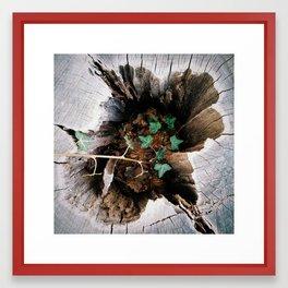 Hidden Ivy Framed Art Print